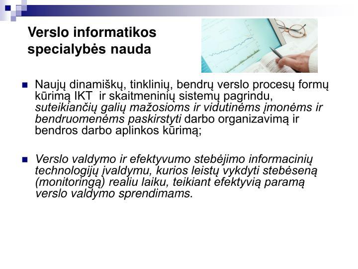 Verslo informatikos specialybės nauda