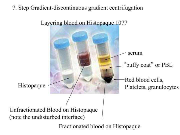 7. Step Gradient-discontinuous gradient centrifugation