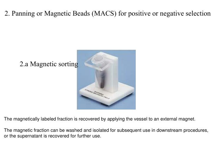 2. Panning or Magnetic Beads (MACS) for positive or negative selection