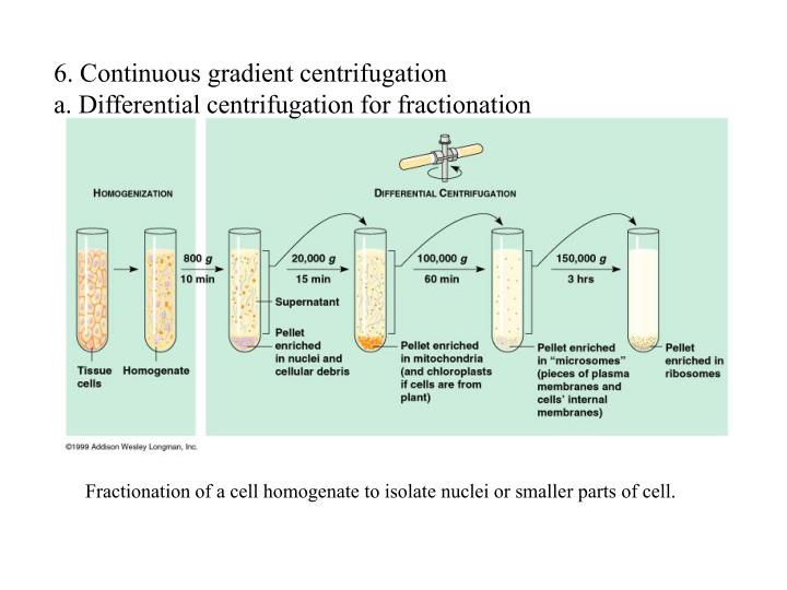 6. Continuous gradient centrifugation