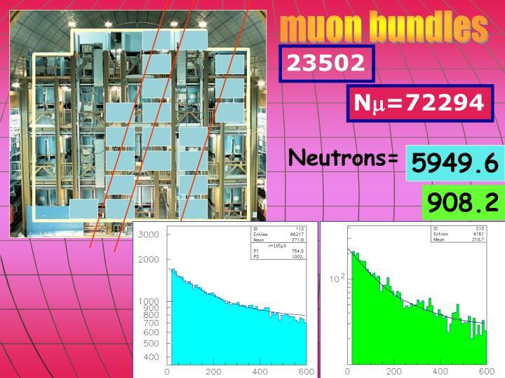 muon bundles