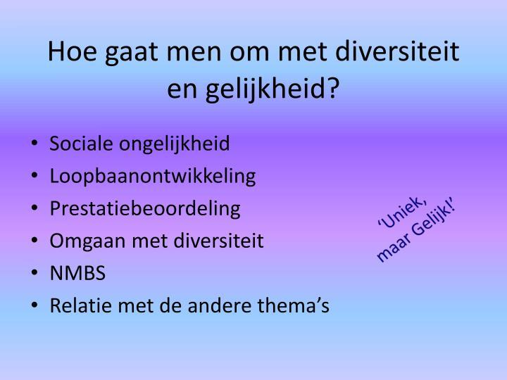 Hoe gaat men om met diversiteit en gelijkheid?