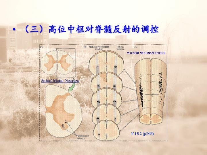 (三)高位中枢对脊髓反射的调控