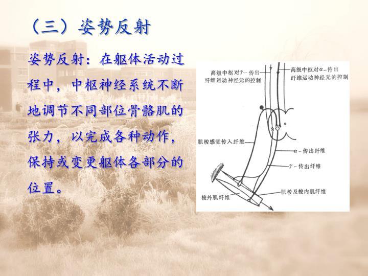 (三)姿势反射