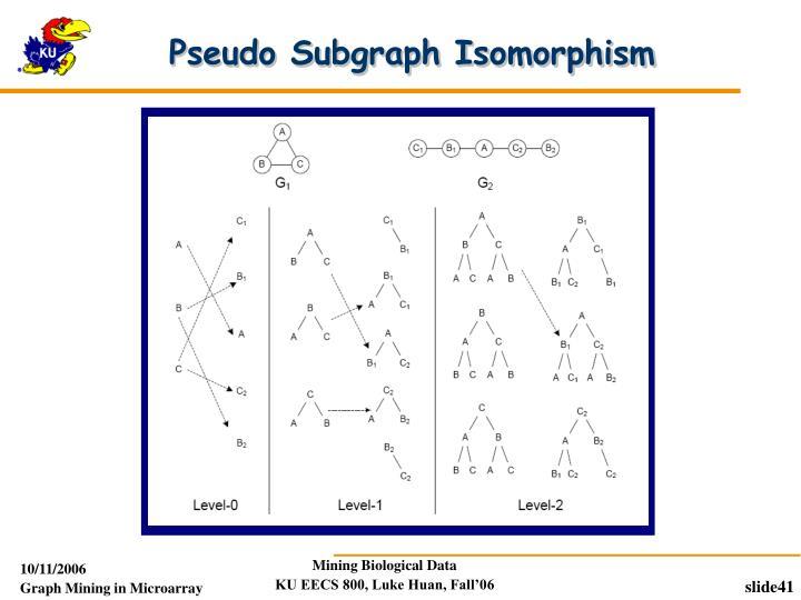 Pseudo Subgraph Isomorphism