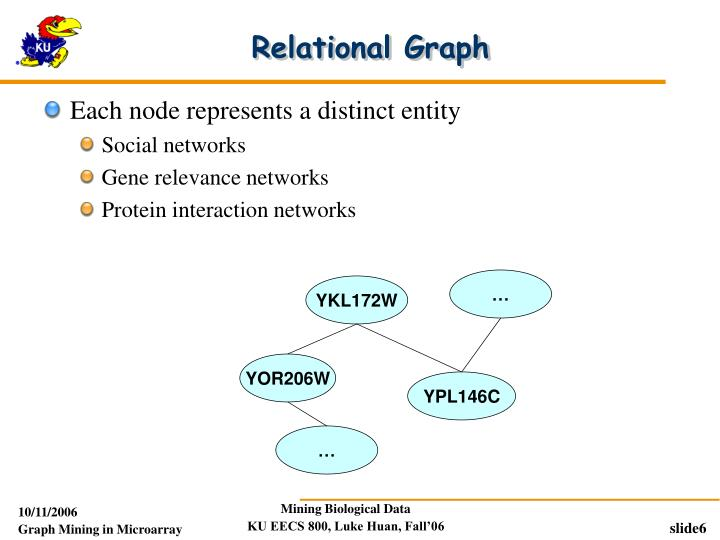 Relational Graph