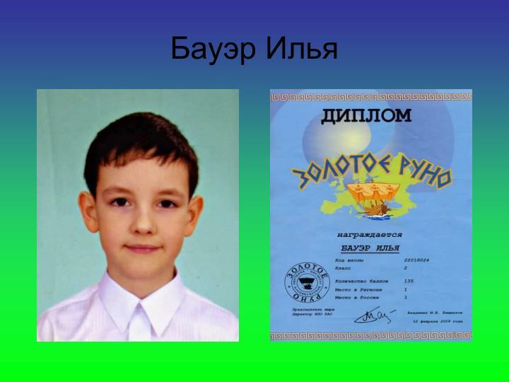 Бауэр Илья
