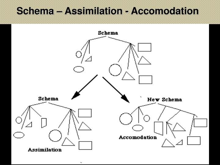 Schema – Assimilation - Accomodation