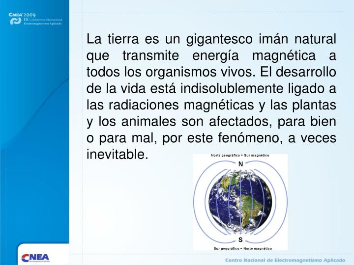 La tierra es un gigantesco imán natural que transmite energía magnética a todos los organismos vivos.