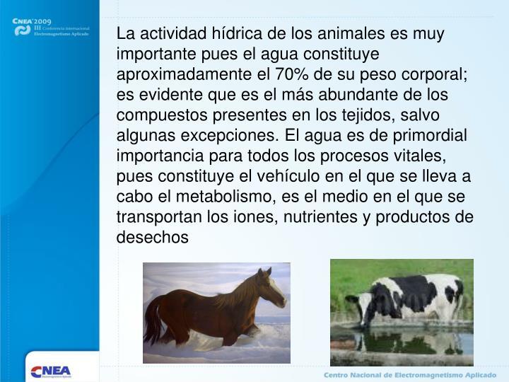 La actividad hídrica de los animales es muy importante pues el agua constituye