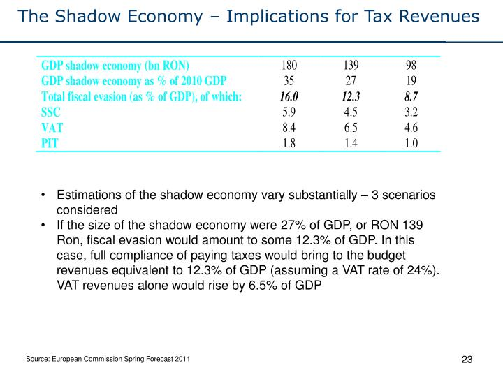The Shadow Economy – Implications for Tax Revenues
