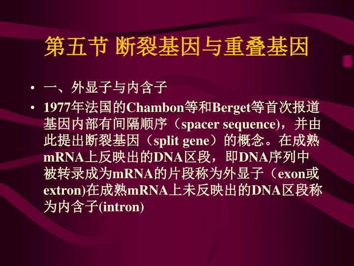 第五节 断裂基因与重叠基因