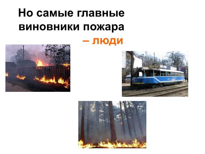 Но самые главные виновники пожара