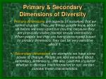 primary secondary dimensions of diversity