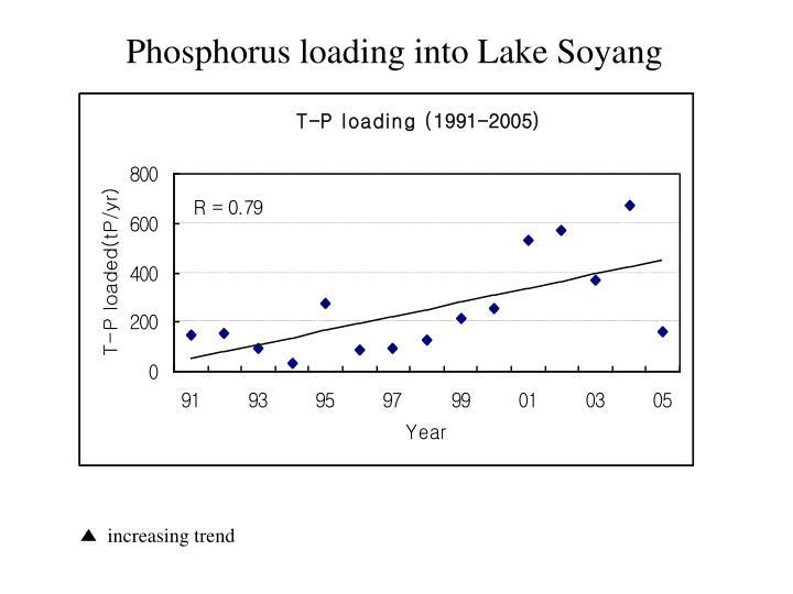 Phosphorus loading into Lake Soyang