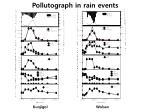 pollutograph in rain events
