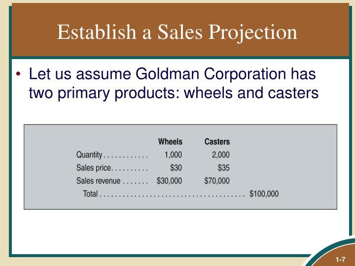 Establish a Sales Projection