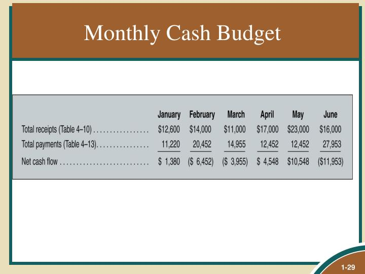 Monthly Cash Budget