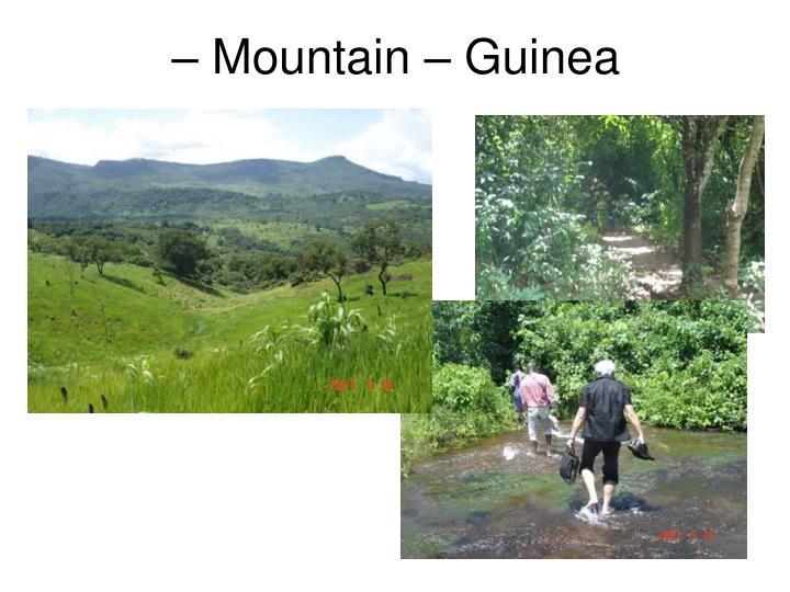 – Mountain – Guinea
