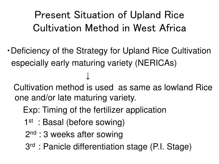 Present Situation of Upland Rice Cultivation Method in West Africa