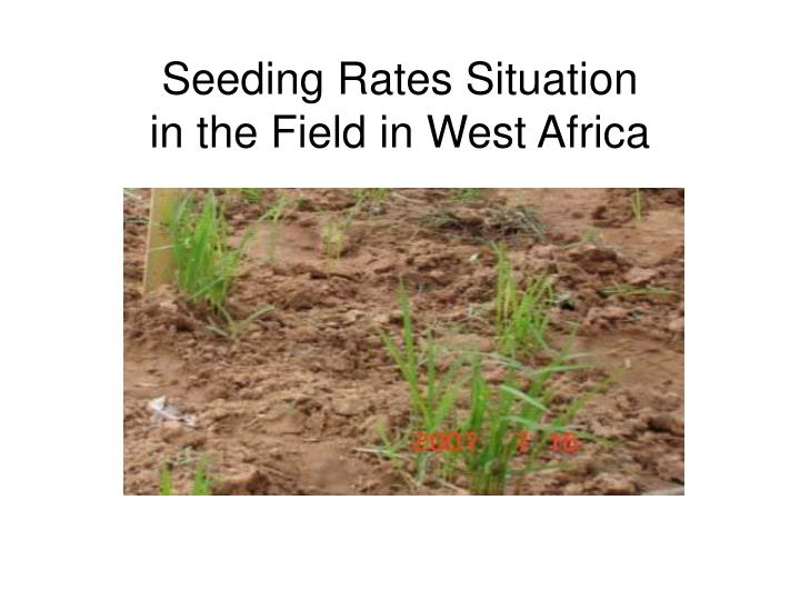 Seeding Rates Situation