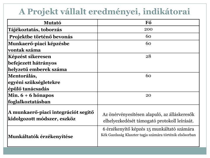 A Projekt vállalt eredményei, indikátorai