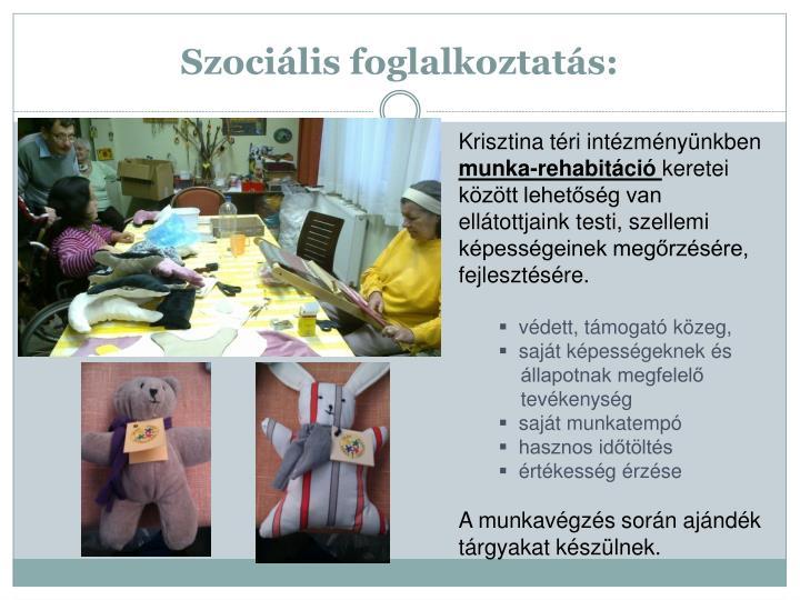 Szociális foglalkoztatás: