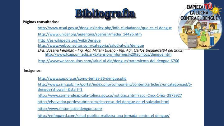 Páginas consultadas: