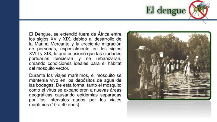 ElDengue, se extendió fuera de África entre los siglos XV y XIX, debido al desarrollo de laMarina Mercantey la creciente migración de personas, especialmente en los siglos XVIII y XIX, lo que ocasionó que las ciudades portuarias crecieran y se urbanizaran, creando condiciones ideales para el hábitat del mosquito vector.
