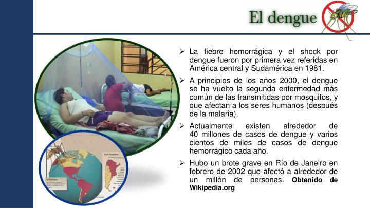 La fiebre hemorrágica y el shock por dengue fueron por primera vez referidas en América central y Sudamérica en 1981.