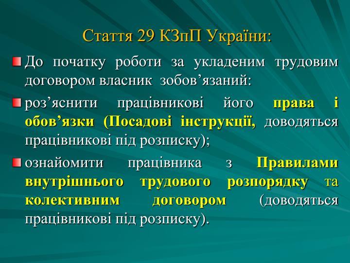 Стаття 29