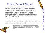 public school choice