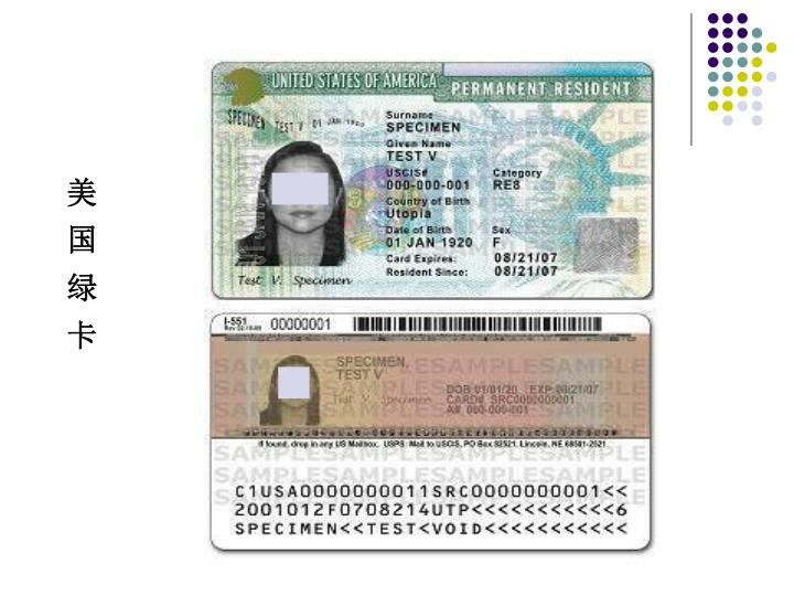 美  国  绿  卡