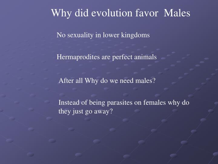 Why did evolution favor  Males