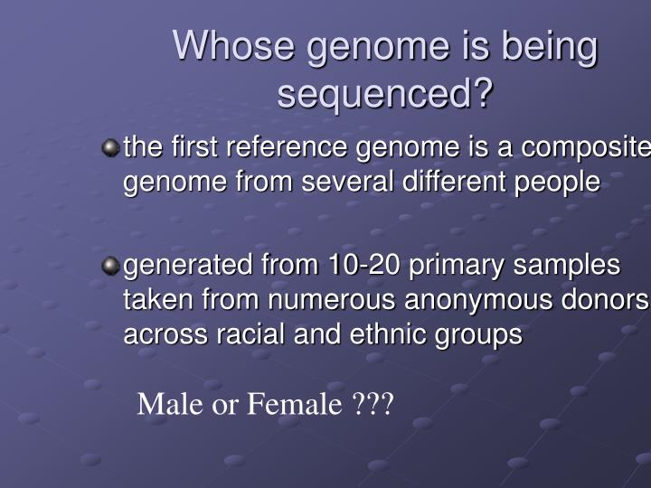 Whose genome is being sequenced?