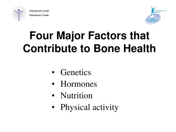 Four Major Factors that Contribute to Bone Health