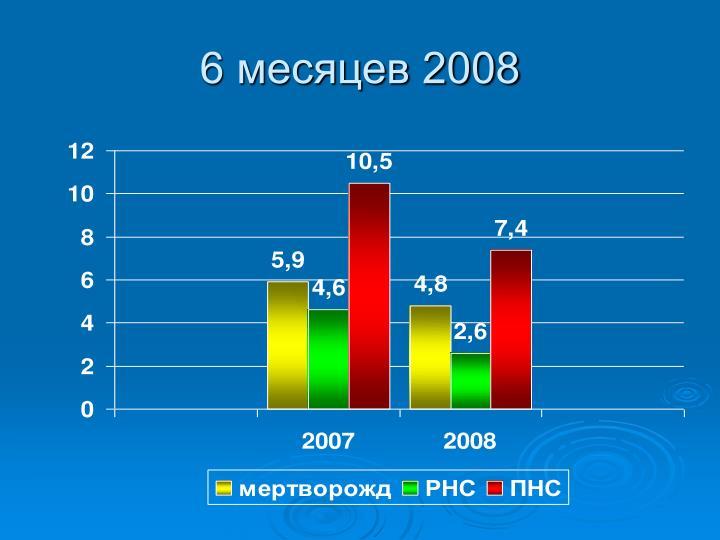 6 месяцев 2008