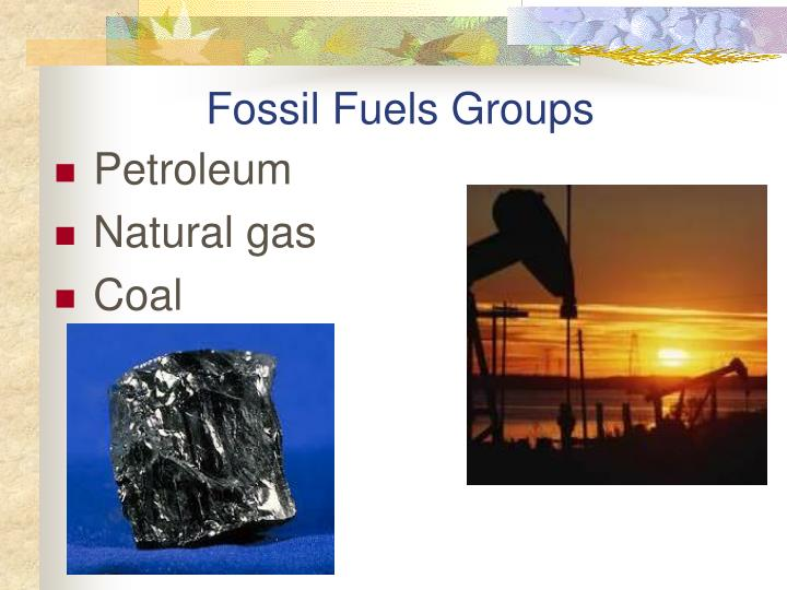 Fossil Fuels Groups