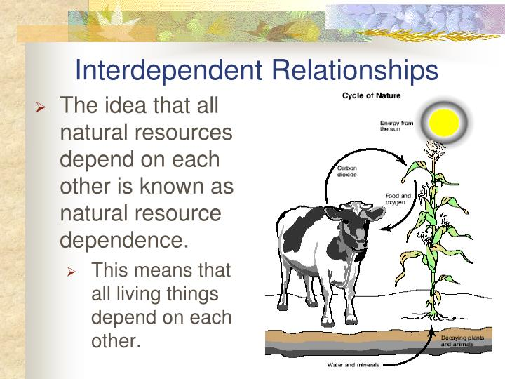 Interdependent Relationships