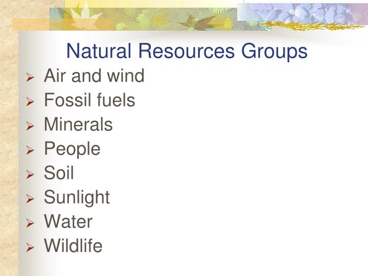 Natural Resources Groups
