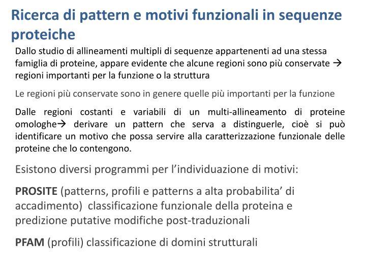 Ricerca di pattern e motivi funzionali in sequenze proteiche