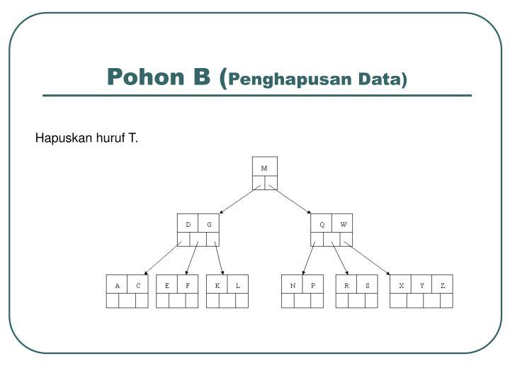 Pohon B (