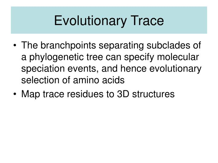 Evolutionary Trace