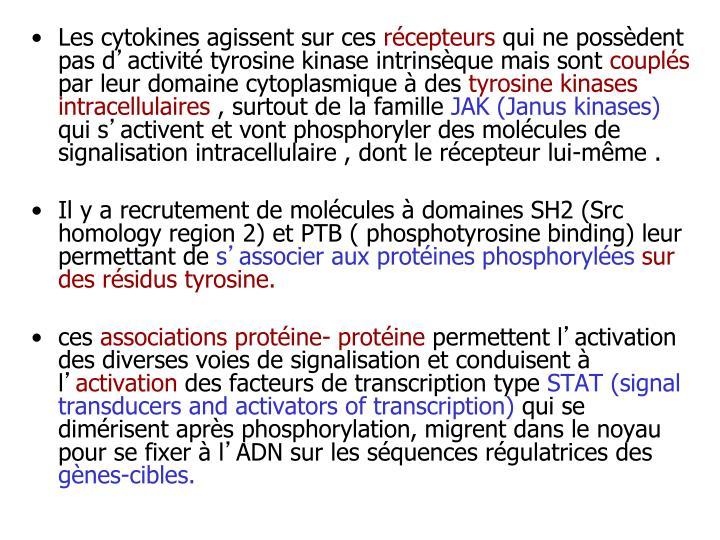 Les cytokines agissent sur ces