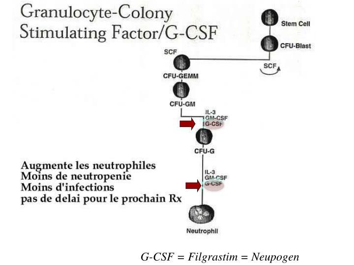 G-CSF = Filgrastim = Neupogen