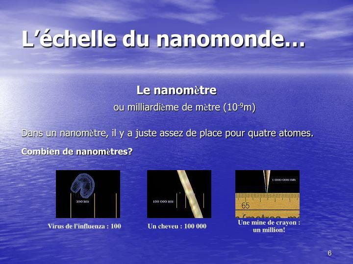 L'échelle du nanomonde…
