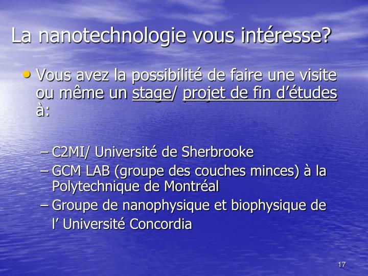 La nanotechnologie vous intéresse?