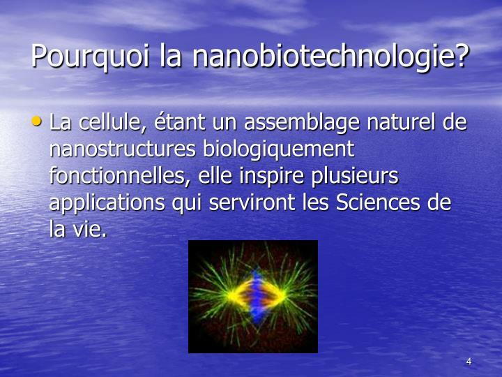 Pourquoi la nanobiotechnologie?