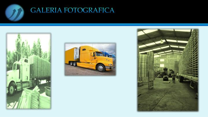 GALERIA FOTOGRAFICA