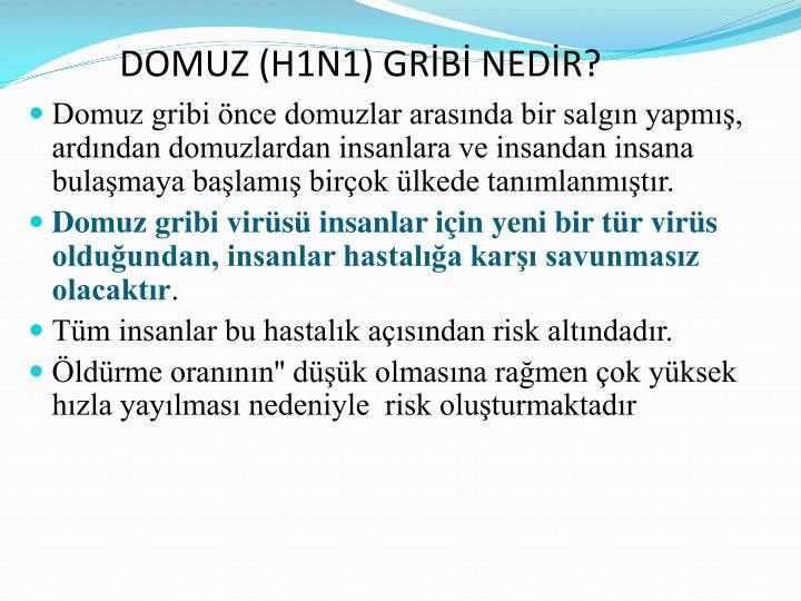 DOMUZ (H1N1) GRİBİ NEDİR?